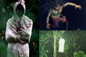 เรื่องเล่าจากป่า